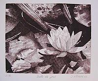 Dietrich-Moravec-Natur-Wasser-Pflanzen-Blumen-Moderne-Naturalismus