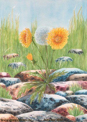 Blumen der leidenschaft 2005 jesus franco - 2 10