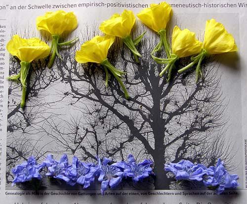Reiner Poser, Florale Komposition, Natur: Luft, Land-Art, Expressionismus