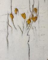 Katrin-Ginster-Pflanzen-Blumen-Gefuehle-Angst