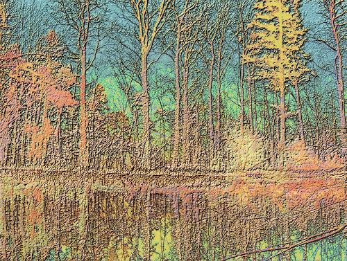 Mérovée, Lac de Barrenc, Natur: Wald, Natur: Wasser, Gegenwartskunst, Expressionismus