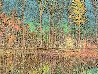 Merovee-Natur-Wald-Natur-Wasser