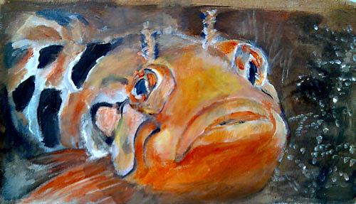 Ute Heitmann, clipfish I, Tiere: Wasser, Gegenwartskunst