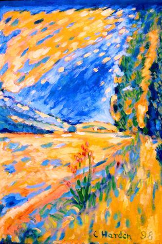 Christophorus Hardenbicker, Gardeweg 1998, Landschaft: Sommer, Impressionismus