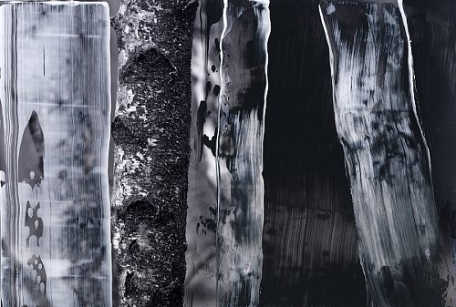 Martina Rußmann, Birkenwald-1, Diverse Landschaften, Natur: Wald, Gegenwartskunst, Abstrakter Expressionismus