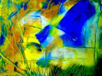 Agnes-Vonhoegen-Diverse-Pflanzen-Landschaft-Sommer-Moderne-Abstrakte-Kunst