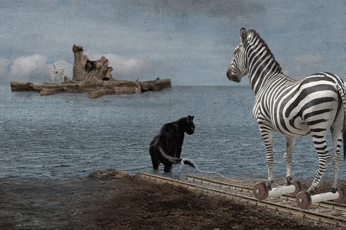 Pascale Turrek, zebrainsel, Diverse Tiere, Tiere: Land, Surrealismus, Expressionismus