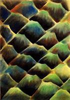 Nicole-Muehlethaler-Natur-Diverse-Pflanzen-Palmen-Moderne-Abstrakte-Kunst