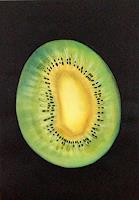 Nicole-Muehlethaler-Pflanzen-Fruechte-Diverse-Pflanzen-Moderne-Abstrakte-Kunst