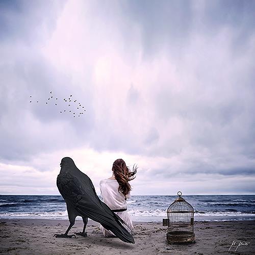 YAPIZO - Michael Maier, Free bird, Fantasie, Gefühle, Postsurrealismus, Expressionismus