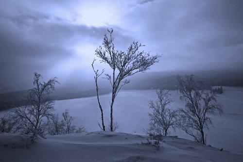 Ulf Göbel, Ewigen Jagdgründen, Landschaft: Winter, Diverse Gefühle, Realismus