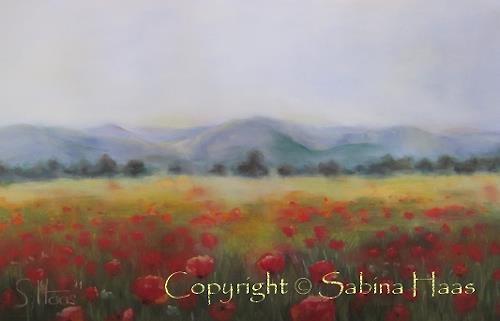 Sabina Haas, Mohnblumenfeld, Pflanzen: Blumen, Landschaft: Ebene