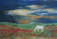 Sabina-Haas-Tiere-Land-Landschaft-Ebene