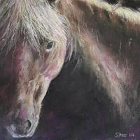 Sabina-Haas-Tiere-Land-Poesie-Gegenwartskunst--Gegenwartskunst-