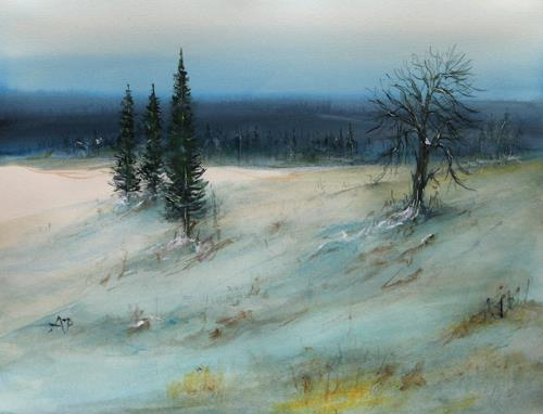 Petra Ackermann, Up North, Diverse Landschaften, Natur: Wald, Gegenwartskunst