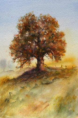 Petra Ackermann, Oak Tree  2, Pflanzen: Bäume, Landschaft: Herbst, Gegenwartskunst