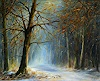 P. Ackermann, Winter Magic