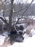 Karl-Heinz-Gewande-Landschaft-Winter-Diverse-Romantik-Gegenwartskunst--Gegenwartskunst-