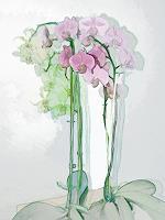 Karl-Heinz-Gewande-Pflanzen-Blumen-Stilleben-Neuzeit-Neuzeit
