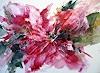 Kerstin Sigwart, rote Blume