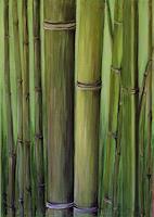 Amigold-Diverse-Pflanzen-Moderne-Abstrakte-Kunst