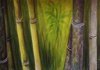 Amigold-Diverse-Pflanzen