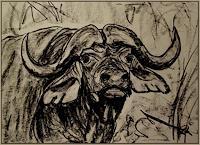 Amigold-Tiere-Land