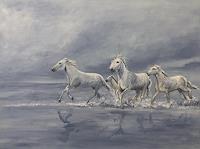 Amigold-Tiere-Land-Tiere-Wasser-Gegenwartskunst-Gegenwartskunst