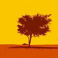 Miriam-Stone-Landschaft-Sommer-Poesie-Moderne-Pop-Art