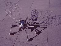 Bruce-Gray-Tiere-Luft-Fantasie