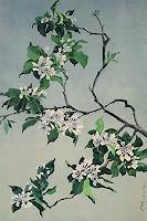 Valeriy-Grachov-Pflanzen-Baeume-Natur-Wald-Moderne-Abstrakte-Kunst