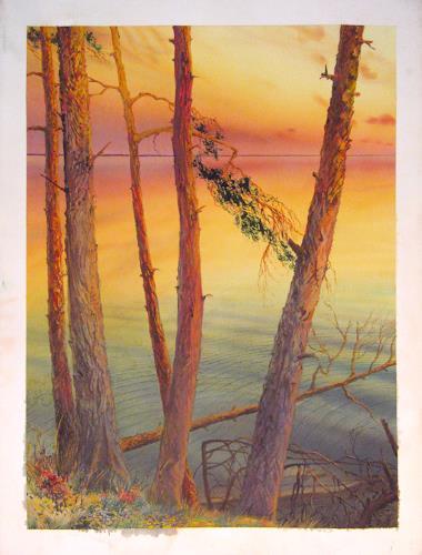 Valeriy Grachov, Kiefer auf dem Dnjepr (Pine trees besides Dnepr), Diverse Landschaften, Natur: Wasser, Realismus, Expressionismus