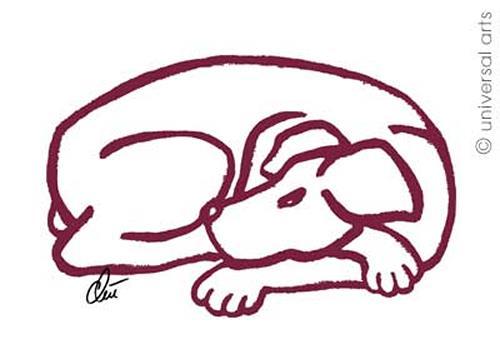 universal arts Jacqueline Ditt & Mario Strack, Dog-Red von Jacqueline Ditt Hund, Tiere: Land, Diverse Tiere, Expressionismus