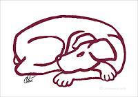 universal-arts-Jacqueline-Ditt---Mario-Strack-Tiere-Land-Diverse-Tiere-Moderne-Pop-Art