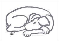 universal-arts-Jacqueline-Ditt---Mario-Strack-Diverse-Tiere-Tiere-Land-Moderne-Pop-Art