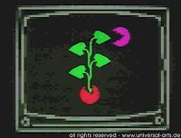 universal-arts-Jacqueline-Ditt---Mario-Strack-Stilleben-Symbol