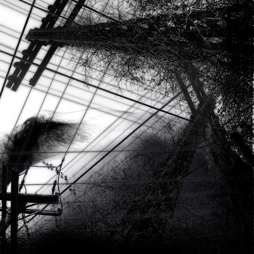 eric j rhoades, The Wires, Akt/Erotik: Akt Frau, Abstrakter Expressionismus
