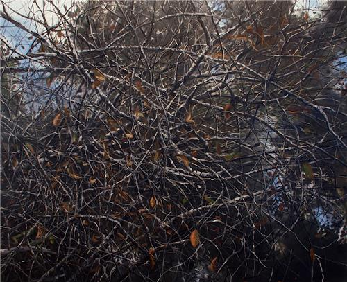 michael carroll, Intertwined, Diverse Landschaften, Gegenwartskunst, Abstrakter Expressionismus