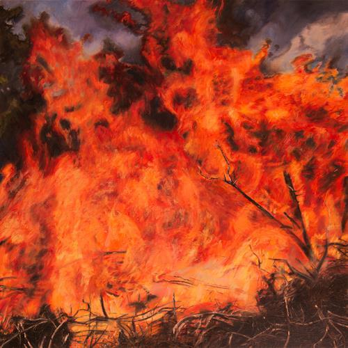 Jennifer Walton, Conflagration, Natur: Feuer, Landschaft: Sommer, Realismus, Abstrakter Expressionismus