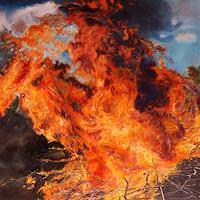 Jennifer-Walton-Natur-Feuer-Landschaft-Sommer-Gegenwartskunst-Gegenwartskunst