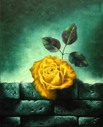 Vladimira Knüsel, Rose auf Ziegelmauer, Stilleben, Gefühle: Liebe, Romantik