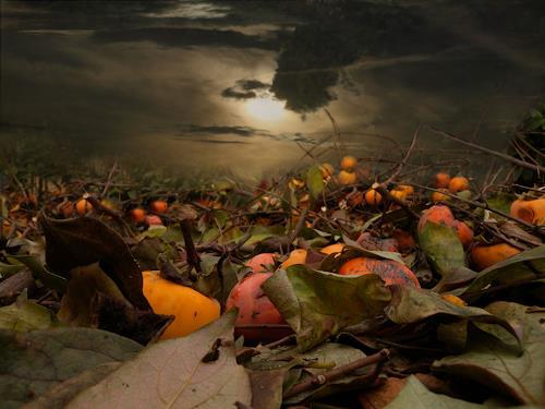 Lino Budano, Kaki, Natur: Erde, Expressionismus