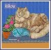 Jean-Pierre CHEVASSUS-AGNES, MY  NORVEGIAN  CAT  KIKOU