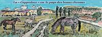 J. CHEVASSUS-AGNES, CAPPADOCE  Horses