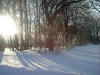 Evelin-Koenig-Zeiten-Winter
