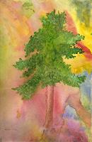 Evelin-Koenig-Pflanzen-Baeume