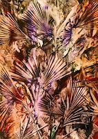 Evelin-Koenig-Pflanzen-Palmen