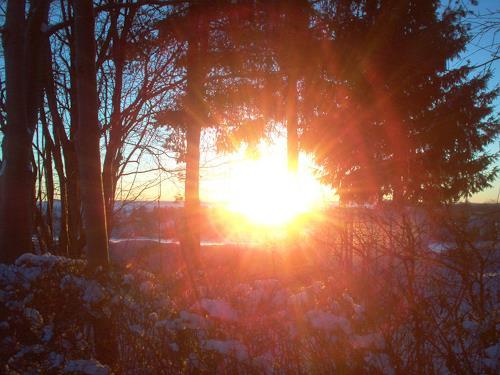 Evelin König, Sonnenaufgang, Natur: Erde
