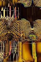 barbara banthau, Digital Art Work