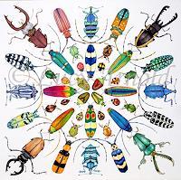 Lucy-Arnold-Diverse-Tiere-Natur-Erde-Neuzeit-Realismus